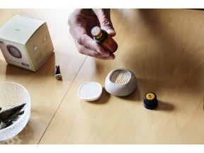 TOAST Living LUFT Car Aroma Diffuser & Essential Oil (10ml) (1 set)