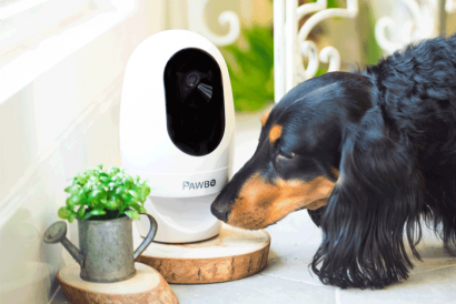Pawbo+ Multi-User Interactive Pet Toy and Monitor (1pc)