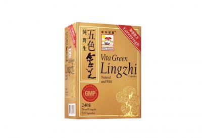 Vita Green Lingzhi (72 Capsules) (1pc)