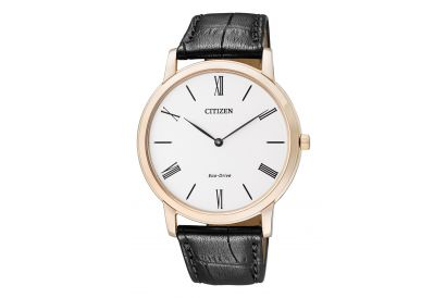 Citizen Eco Drive Leather Gent Watch (1pc)