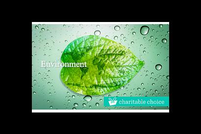 Charitable Choice HK$100 Charity Donation – Environment