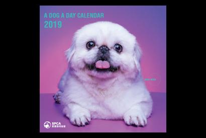 SPCA Wall Calendar 2019 (1 pc)