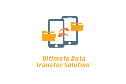 Ultimate Data Transfer & Device Diagnostics Service (Basic Plan – once)